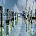 Reflections In The Marina by Tom Gari Gallery-Three-Photography