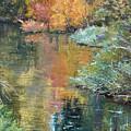 Reflections by Kit Hevron Mahoney