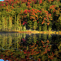 Reflections Of Autumn by David Patterson