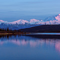 Reflections Of Denali At Sunset by Brenda Jacobs