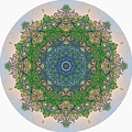 Reflections Of Life Mandala by Beth Sawickie