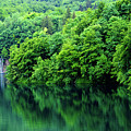 Reflections Of Plitvice, Plitvice Lakes National Park, Croatia by Global Light Photography - Nicole Leffer