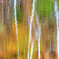 Reflections Of The Canadian Fall by Csaba Demzse