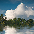 Reflections Of Trees And Clouds by Robert Meyerson