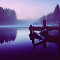 Reflections Of Winter by Amanda Finan