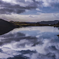 Reflections On Harris by Neil Alexander
