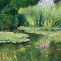 Reflections On Monets Lily Pond by Tara Moorman