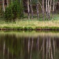reflections RIV M 2 by Sierra Dall