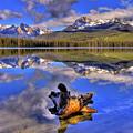 Reflections by Scott Mahon