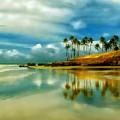 Reflective Beach by Dawn Van Doorn