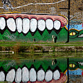 Reflective Canal 12 by Jez C Self