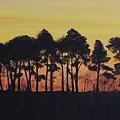 Refuge Sundown by Lizi Beard-Ward