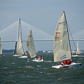 Regatta In Charleston Harbor by Susanne Van Hulst