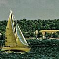 Regatta On Seneca Lake by William Norton