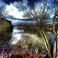 Reifel In Winter 4 by Lawrence Christopher