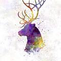 Reindeer 01 In Watercolor by Pablo Romero