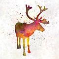 Reindeer 02 In Watercolor by Pablo Romero