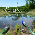 Relax Lake Time-jp2737 by Jean Plout