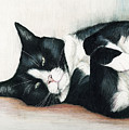 Relaxed Tuxedo by Charlotte Yealey