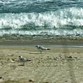 Relaxing By The Ocean by Maria Keady