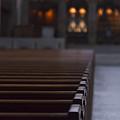 Religion by Margie Hurwich