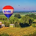 Remax Hot Air Balloon Ride by Monica Hall