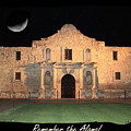 Remember The Alamo by Carol Groenen