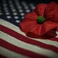 Remembrance Usa Flag by Terry DeLuco