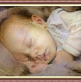 Renoircalia Catus 1 No. 2 - Adorable Baby L B With Decorative Ornate Printed Frame. by Gert J Rheeders