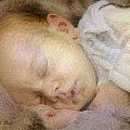 Renoircalia Catus 1 No.2 - Adorable Baby L A by Gert J Rheeders