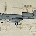 Republic A-10 Thunderbolt II - Profile Art by Tommy Anderson