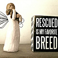 Rescued Is My Favorite Breed And The Angel by Cathy Smith