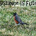Resistance Is Futile by Debbie Oppermann