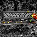 Resting Flowers by William Zayas Cruz