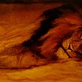 Resting Lion by Arlene Rabinowitz