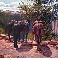Resting On The Kaibab Trail by Donald Maier