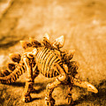 Restoration In Extinction  by Jorgo Photography - Wall Art Gallery