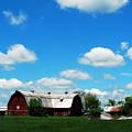Retired Barn by Lori Tambakis