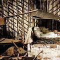 Retired Blacksmith by Lexa Harpell