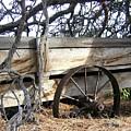 Retired Farm Wagon by Will Borden