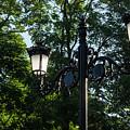 Retro Chic Streetlamps - Old World Charm With A Modern Twist by Georgia Mizuleva