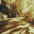 Retro Rainforest Road by Jorgo Photography - Wall Art Gallery