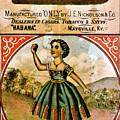 Retro Tobacco Label 1868 C by Padre Art