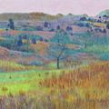 Return Of Green Dream by Cris Fulton