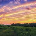 Retzer Nature Center - Summer Sunset #4  by Jennifer Rondinelli Reilly - Fine Art Photography