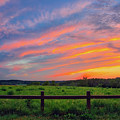 Retzer Nature Center - Summer Sunset Over Field And Fence by Jennifer Rondinelli Reilly - Fine Art Photography