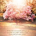 Revelation Tree Of Life by Debbie Nobile