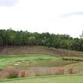 Reynolds Plantation Golf Ga Usa by Jan Daniels