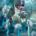Rez Dog Cover Art by Carol Cavalaris