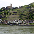 Rhine Castle And Terraced Vineyards by Ruth Ann Mertens